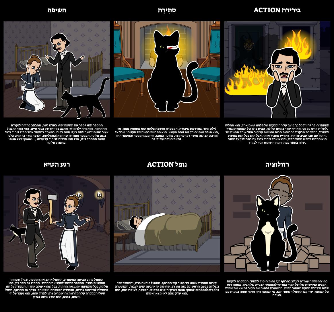 מגרש תרשים עבור החתול השחור