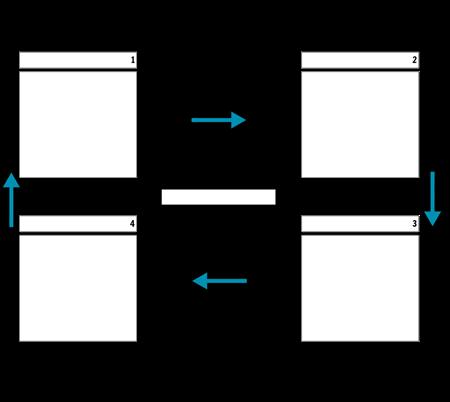מחזור תאים 4 עם חצים