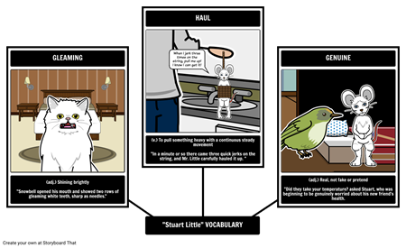 Stuart Little Vocabulary Lesson Plan as a Graphic Organizer