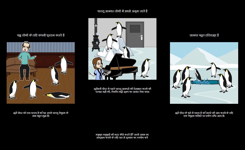 श्री पॉपर पेंगुइन - पाठ साक्ष्य
