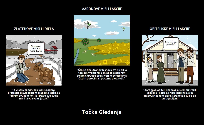Zlatka Kozja - Točka Gledanja
