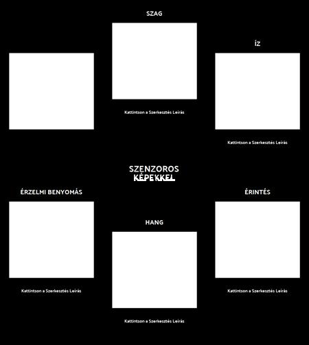 Érzékszervi Képeket a Memory Exercise Template