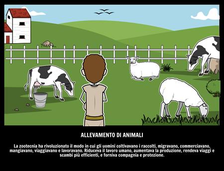 Allevamento di Animali