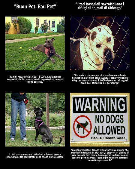 Buon Animale Domestico, Cattivo Animale Domestico - Integrazione di Testi