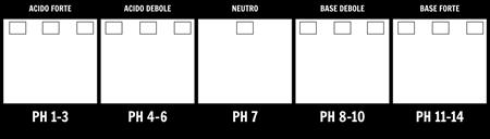 pH Scala Template