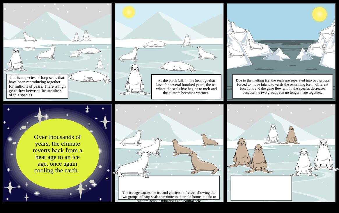 Jula's Speciation Storyboard