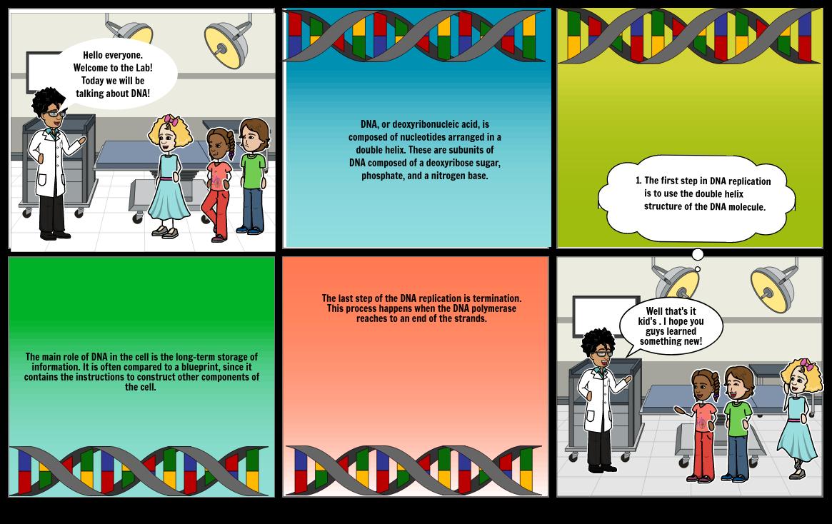Story Board DNA  Biology