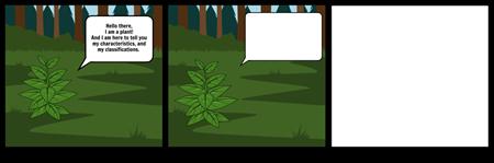 Plant Characteristics and Classifications