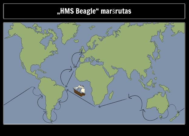 Beagle Maršrutas