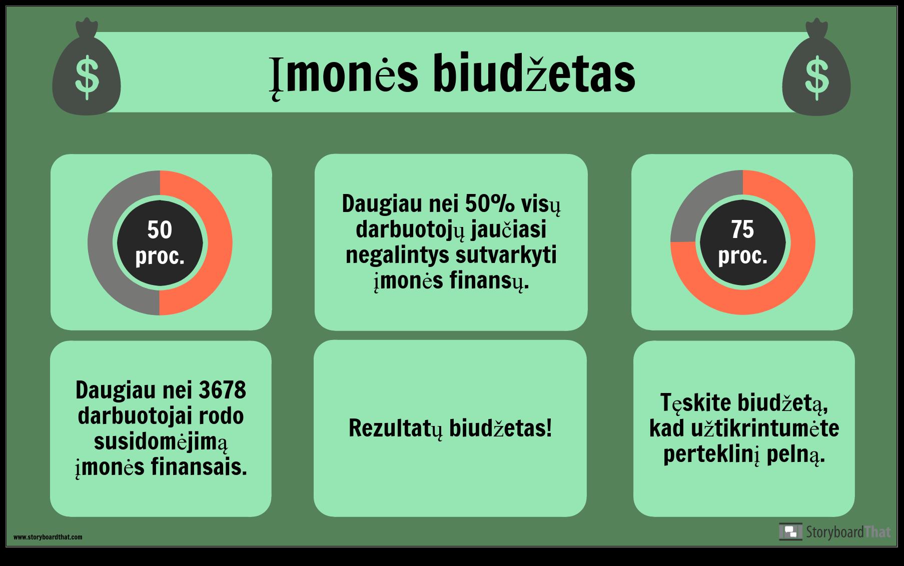 Biudžeto Pavyzdys
