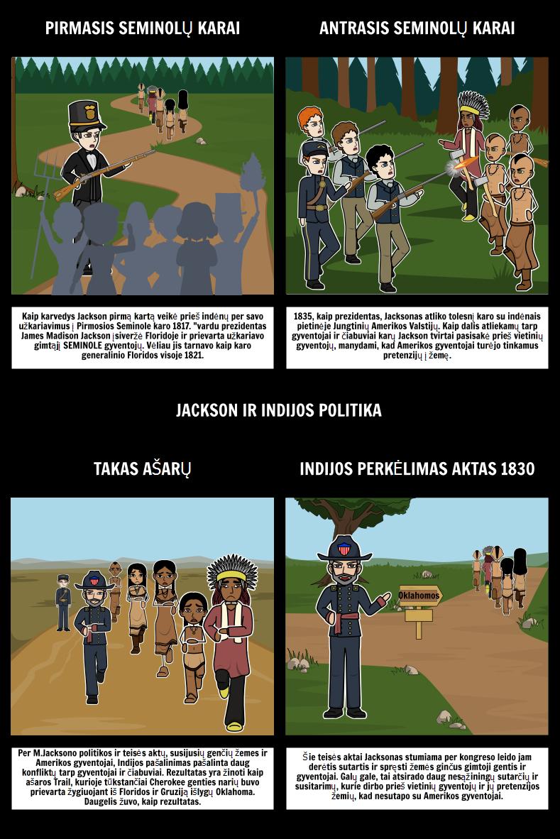 Džeksoniškąjį Demokratija - Džeksonas ir Indijos Politika