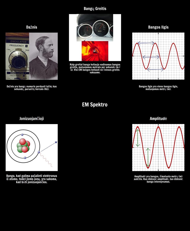 EM Spektro Žodynas