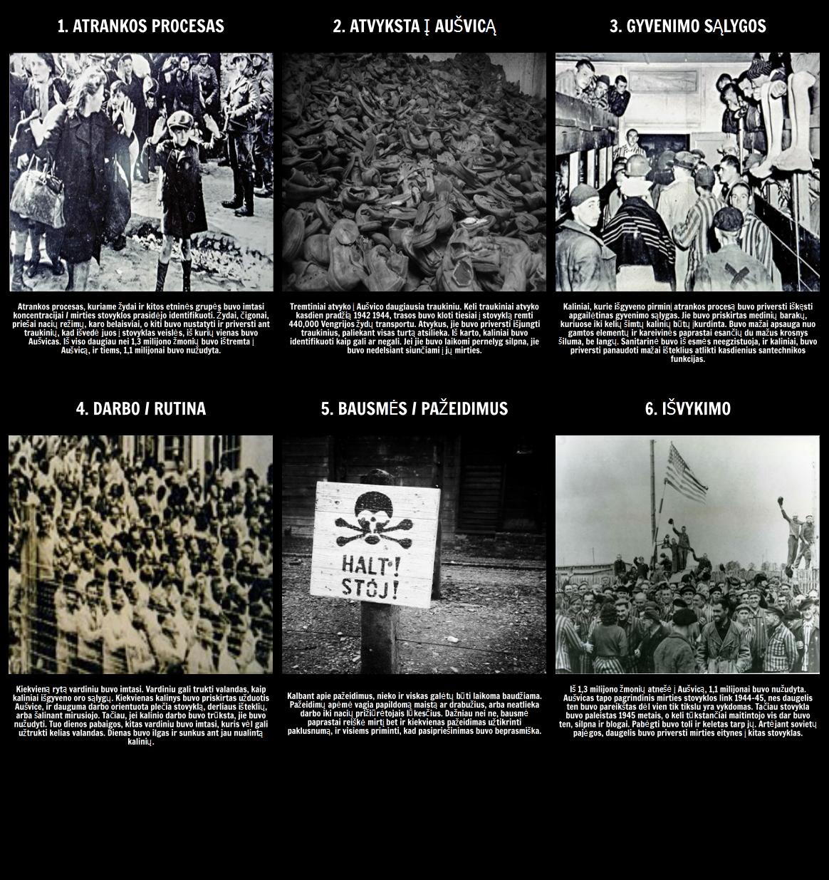 Gyvenimas Aušvico - Holokausto Istorija