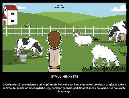 Gyvulininkystė