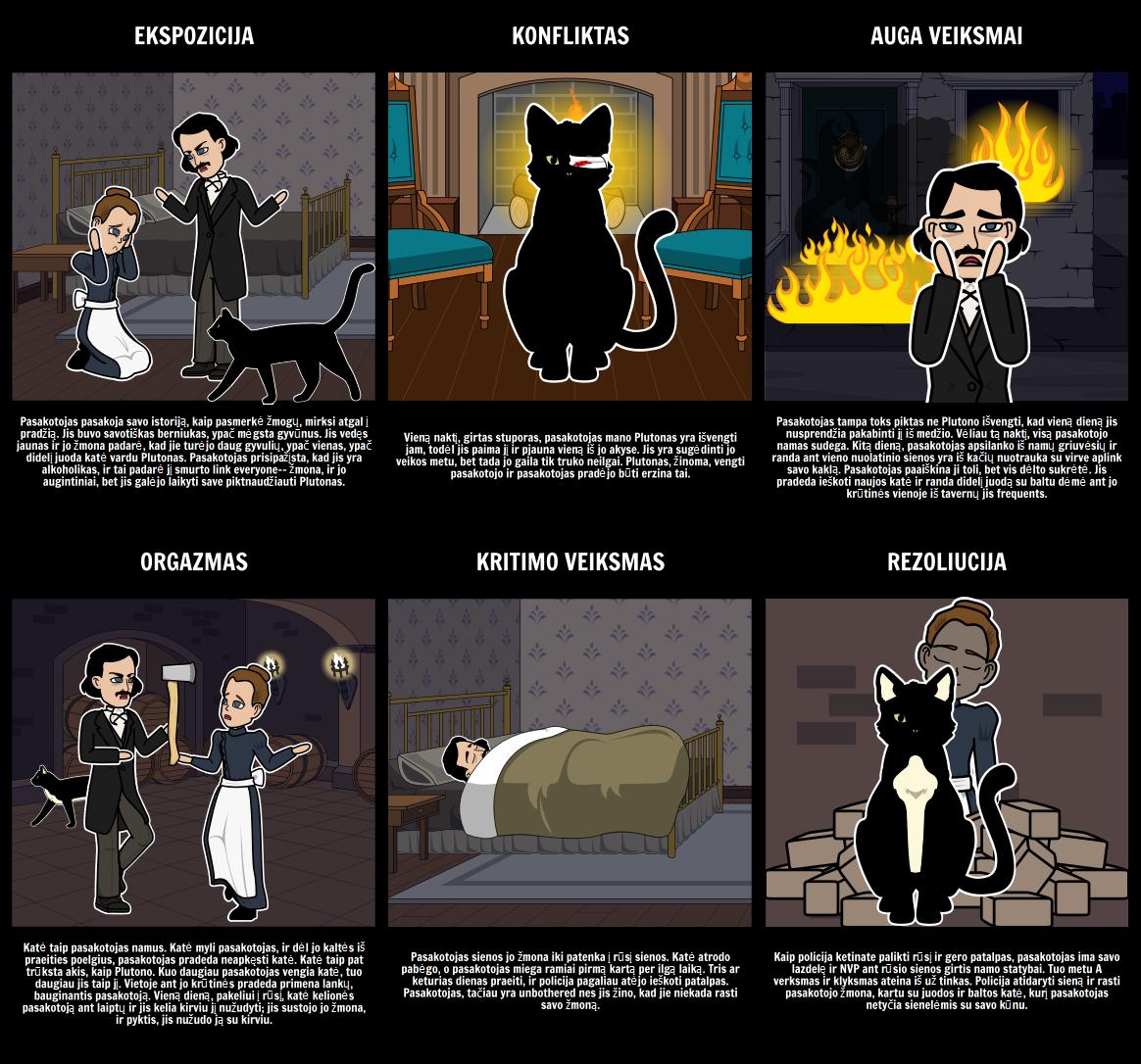 Sklypas Diagramą The Black Cat
