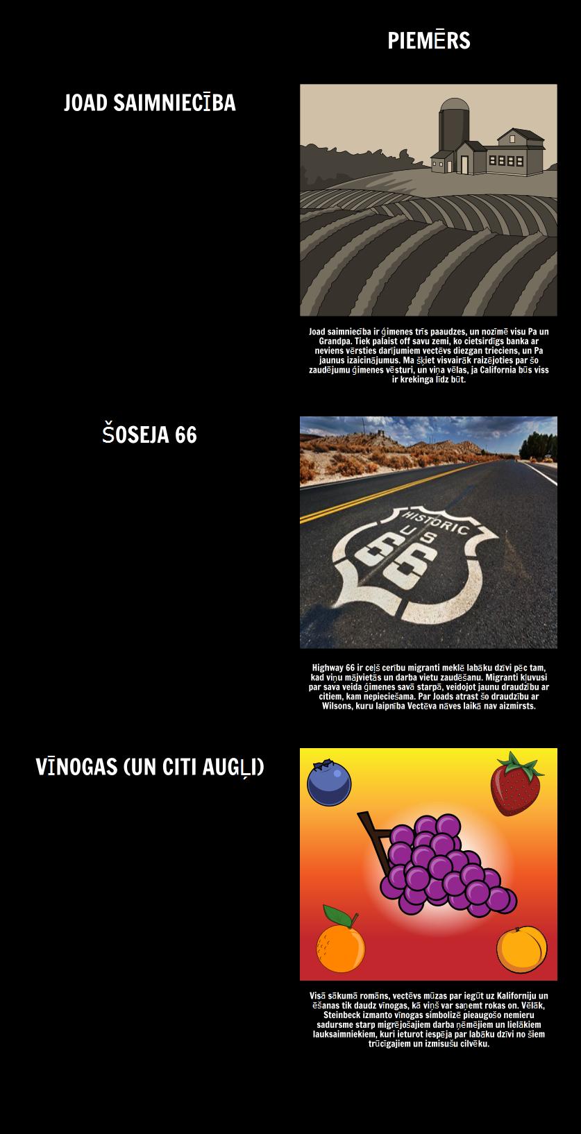 Tēmas, Motīvi un Simboli Sašutums Vīnogas