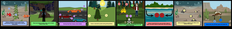 The life of a carbon atom