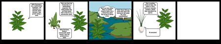 Plant Classification Graphic Novel