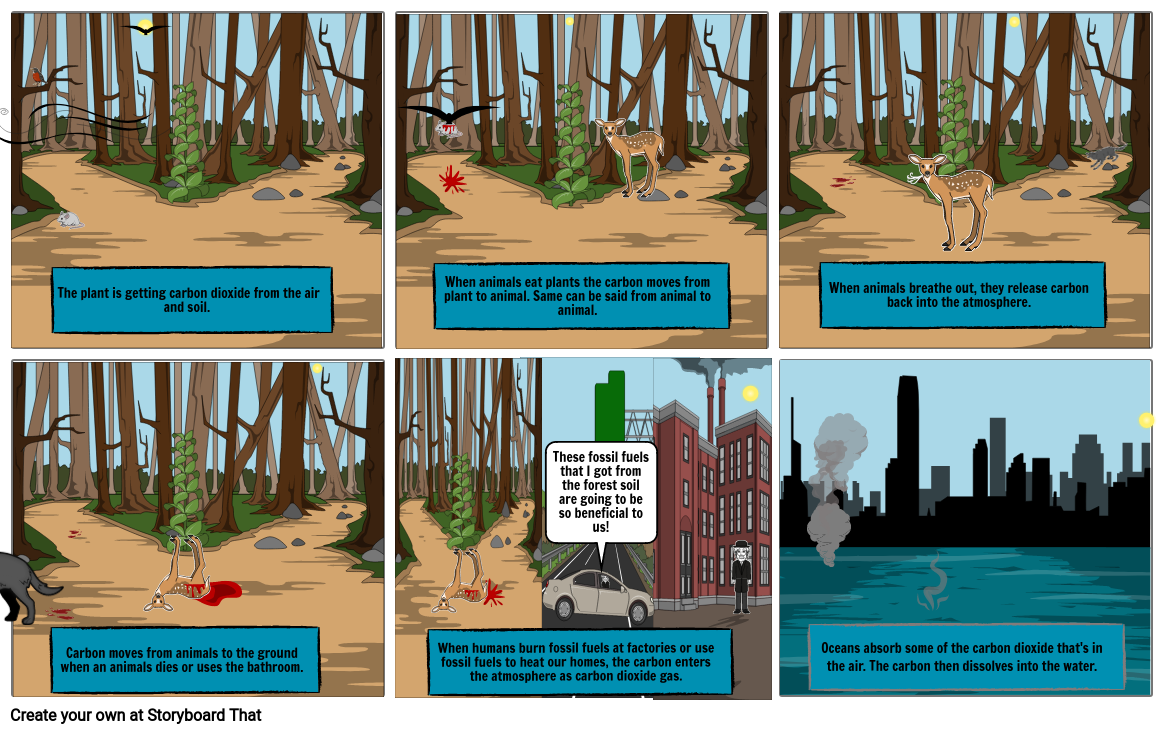 Science Carbon Cycle