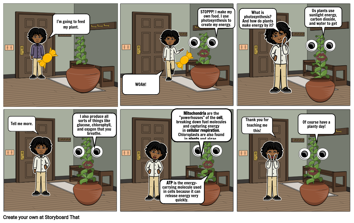 Photosynthesis Comic Strip