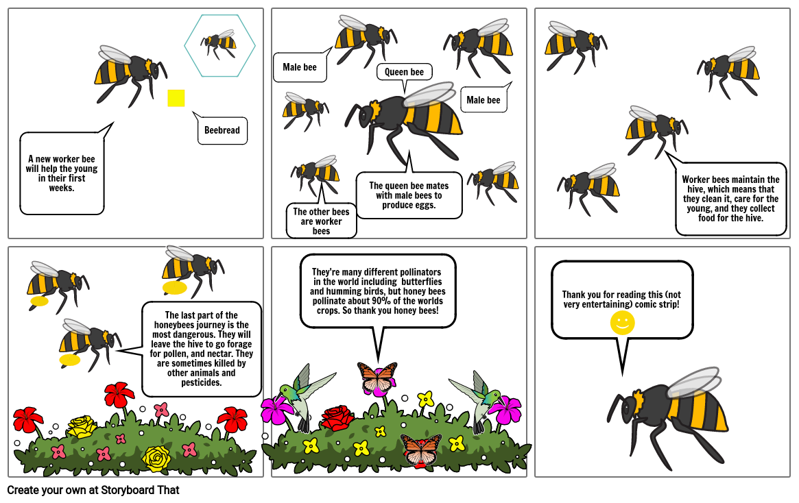 daily life of a bee