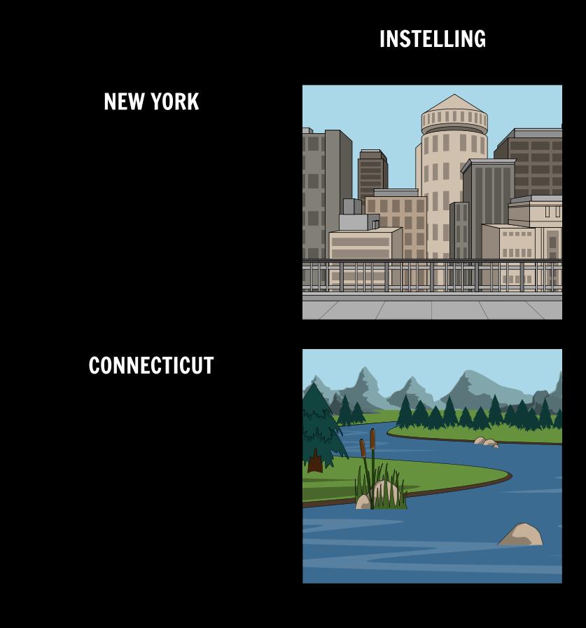 De Cricket in Times Square - Omgeving Vergelijking / Contrast
