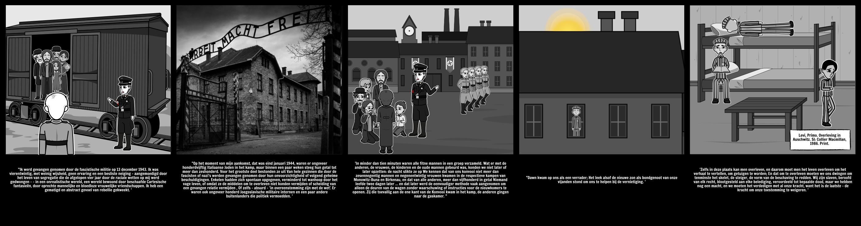 De Geschiedenis van de Holocaust - Slachtoffers van de Holocaust: Primo Lev