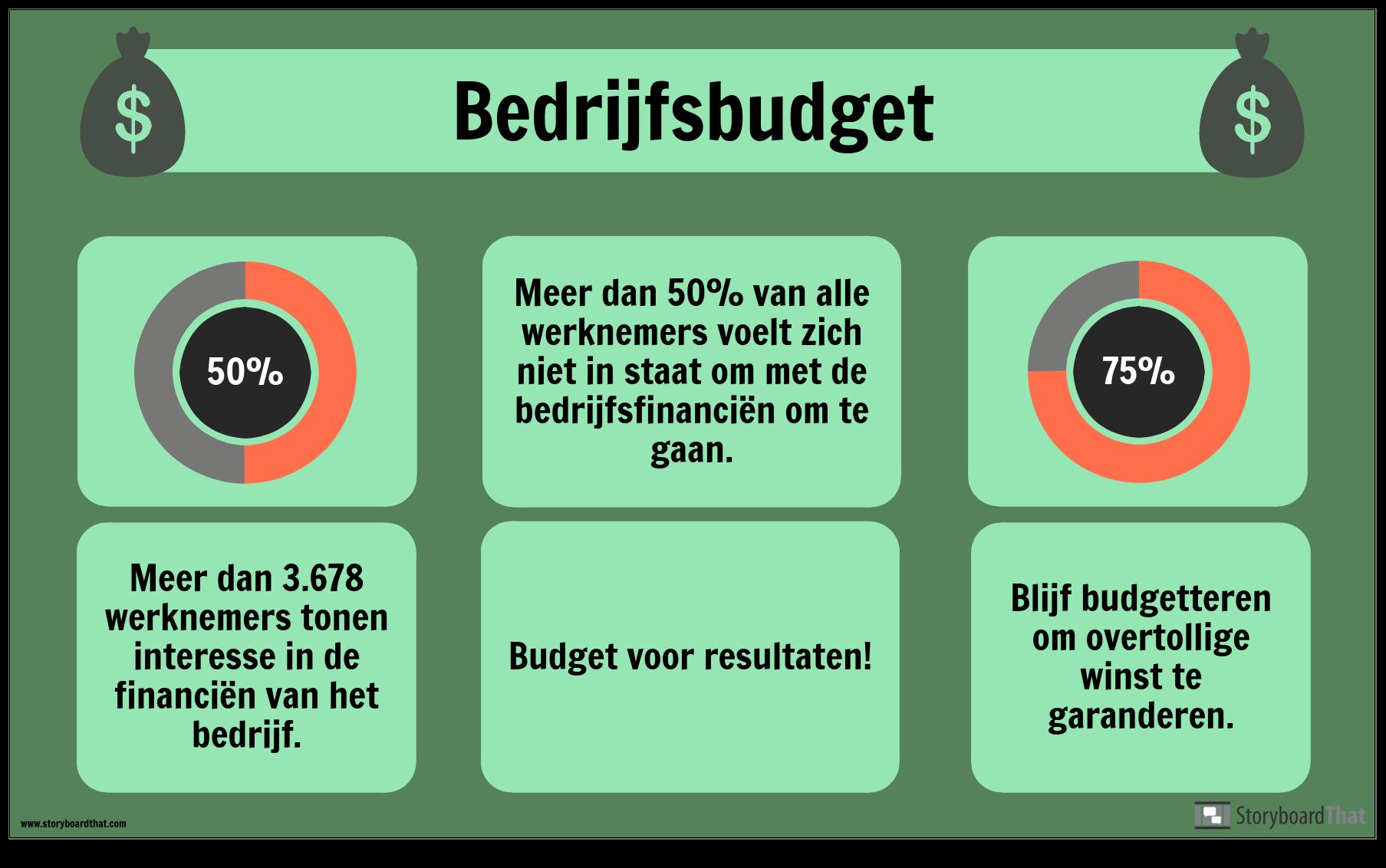 Voorbeeld Budget