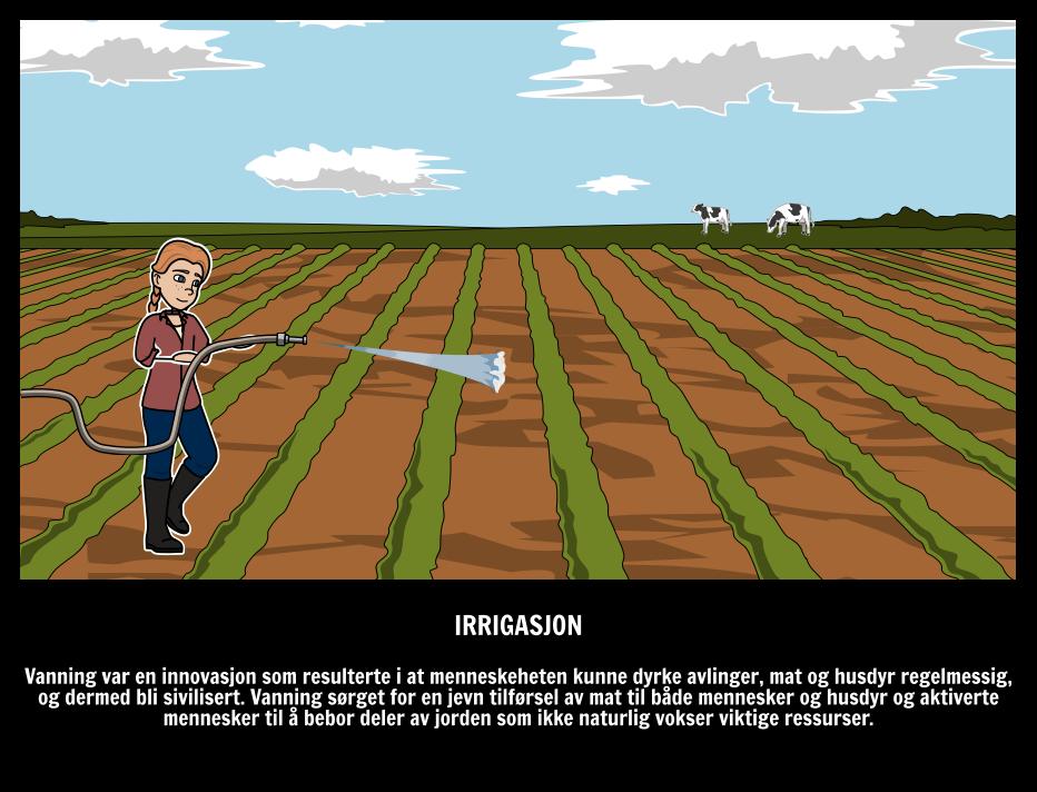 Irrigasjon