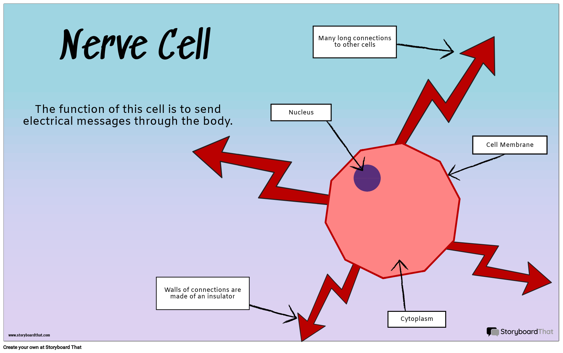 what are specialized cells ideal vistalist co