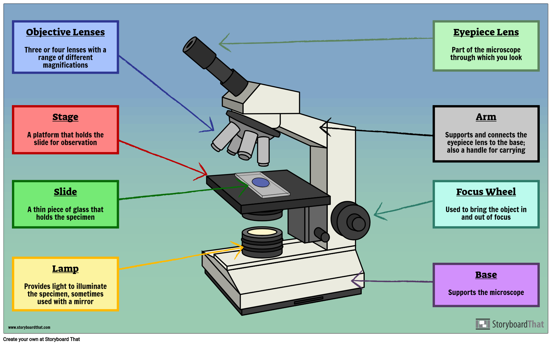Parts of a Microscope Labeling Activity