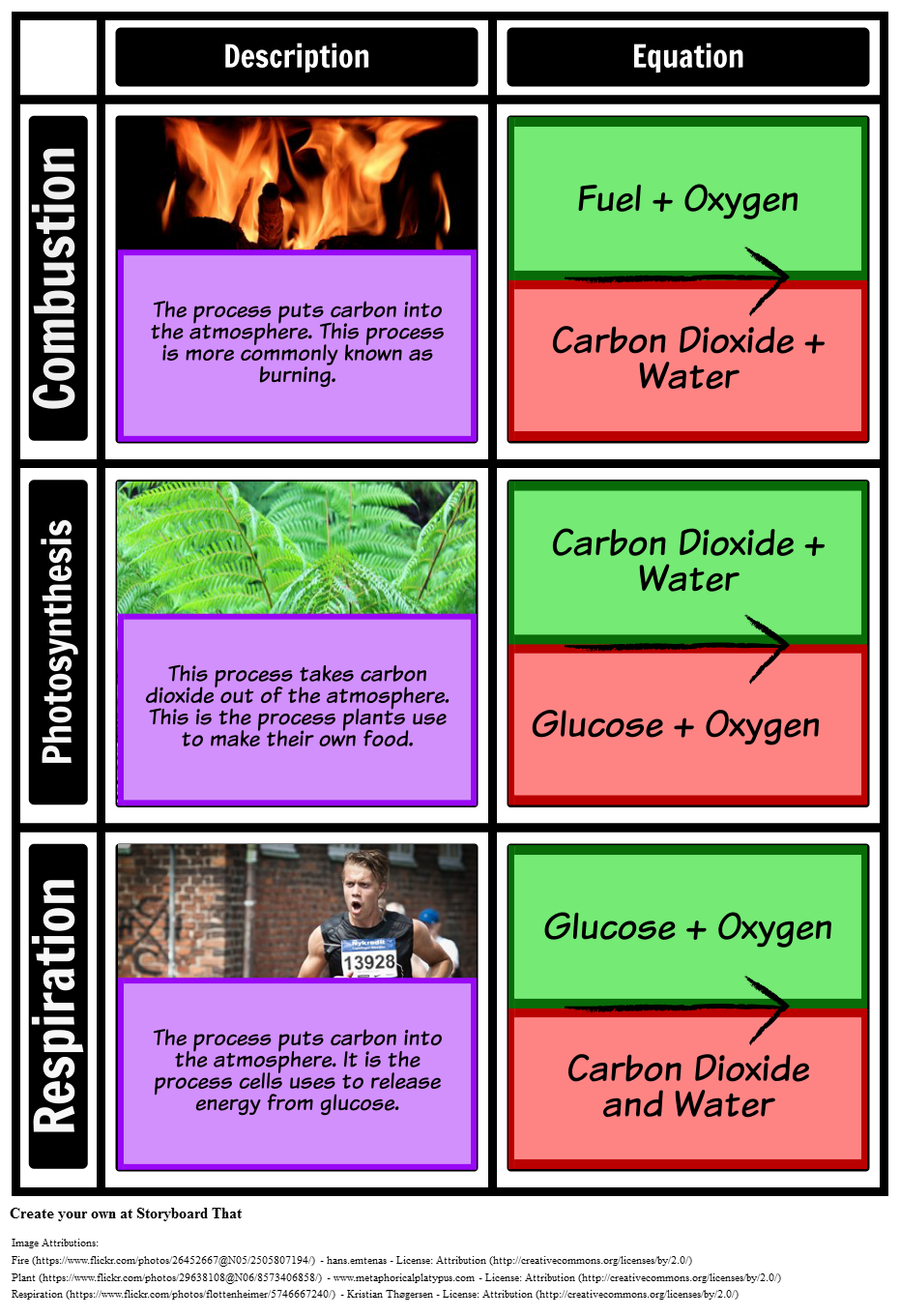 Processes In The Carbon Cycle Grid