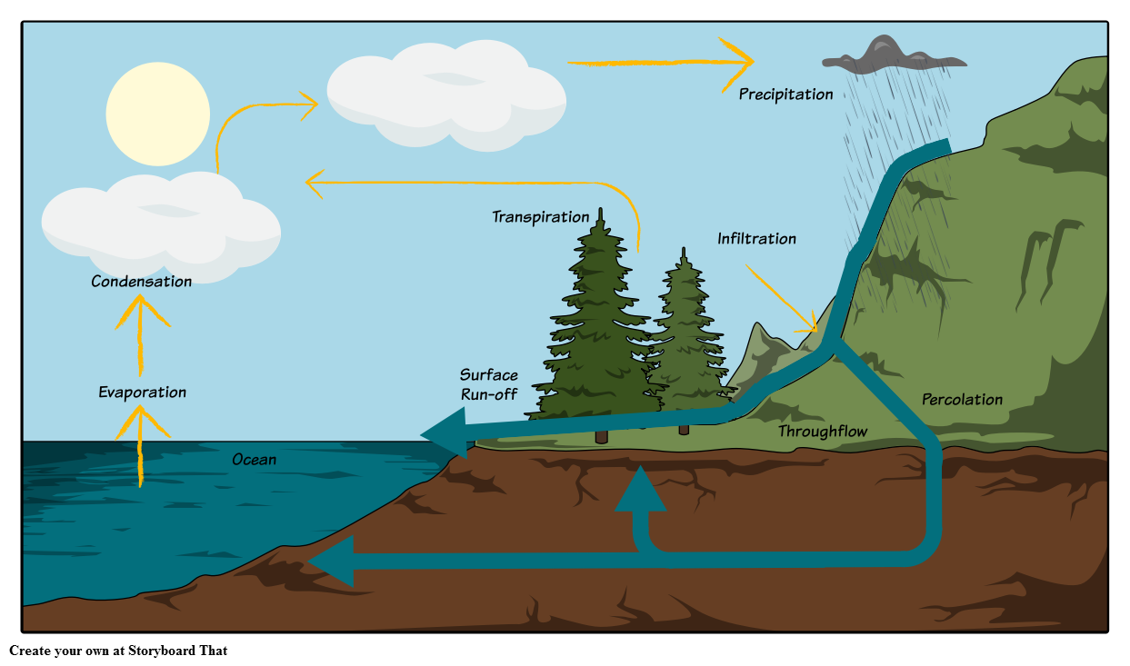 water cycle diagram label parts of the water cycle Water Cycle Graphic to Label