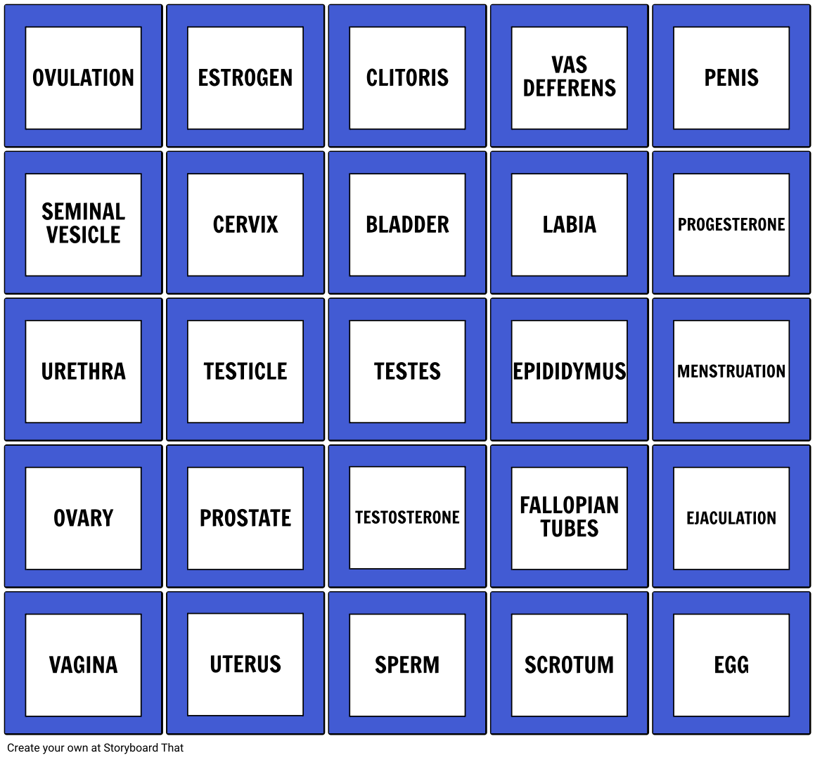 Bingo Terms Original Layout