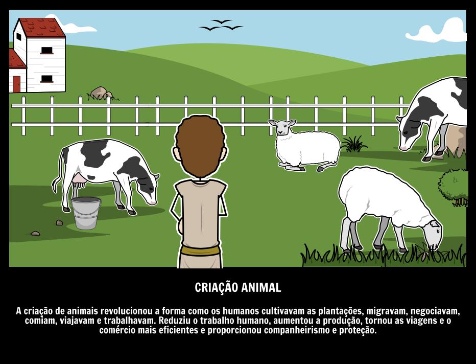 Criação Animal