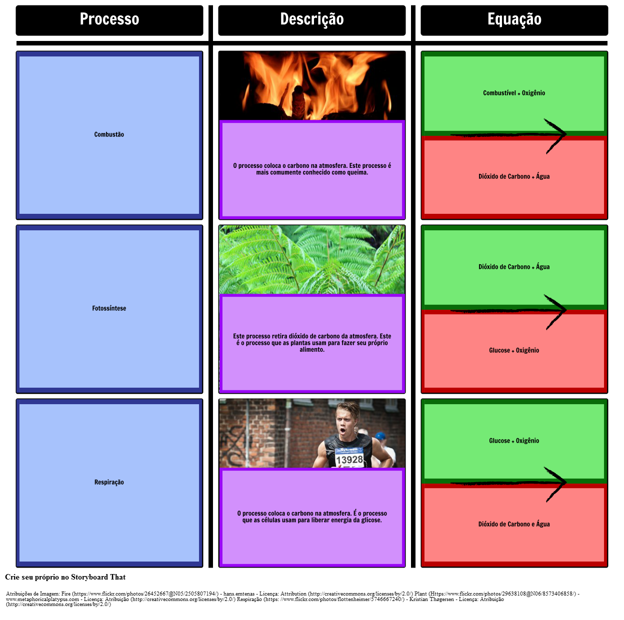 Processos no Ciclo de Carbono