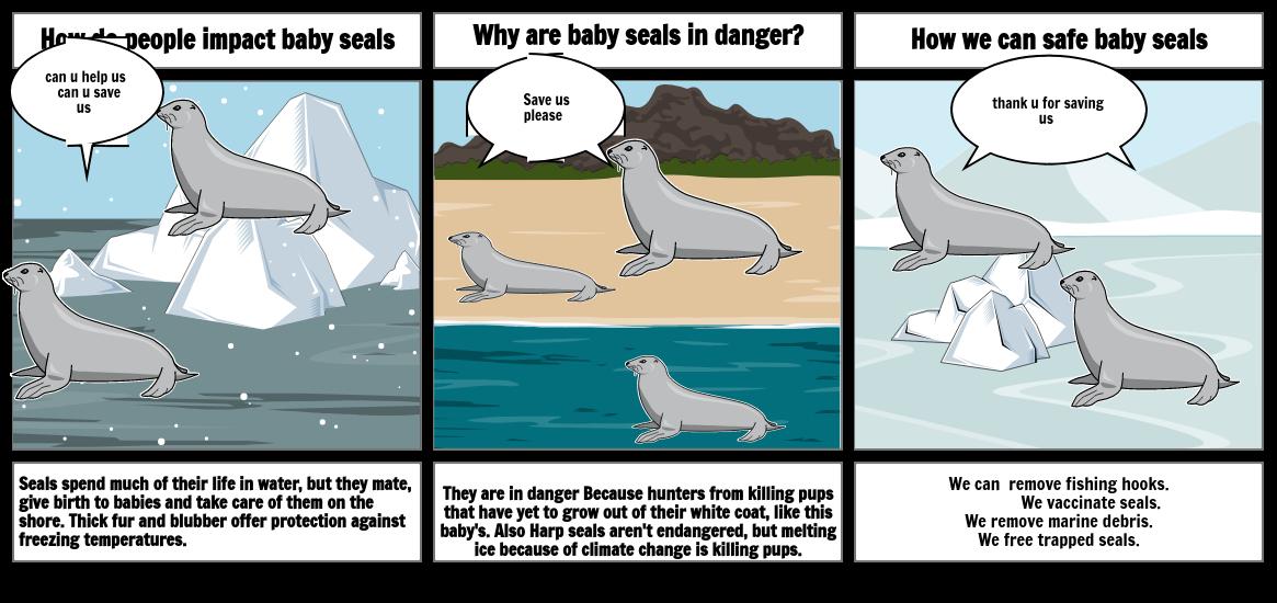 Seals project