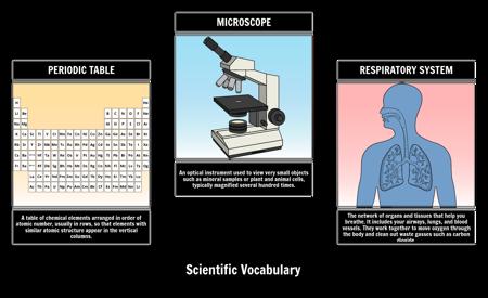 Visual Vocabulary - Science