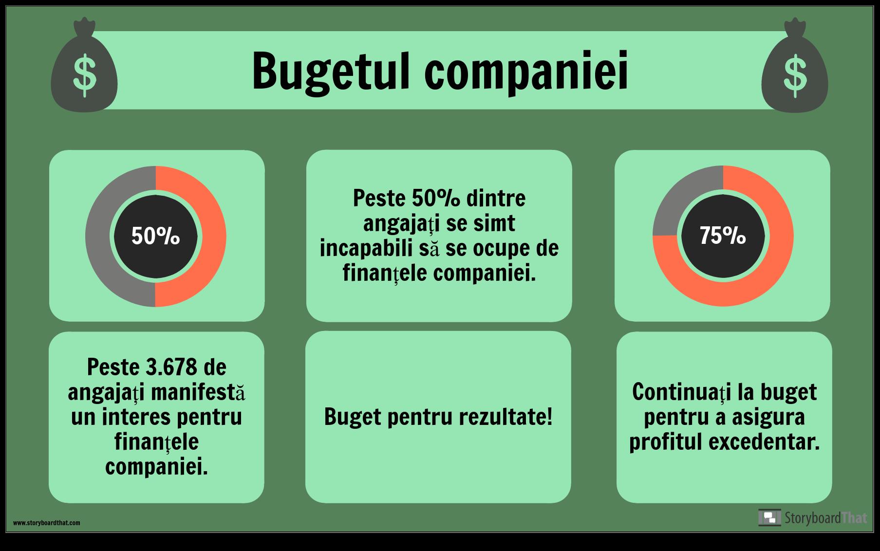 Exemplu Bugetar