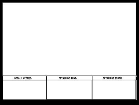 Formatul Descriptiv de Practică de Scriere