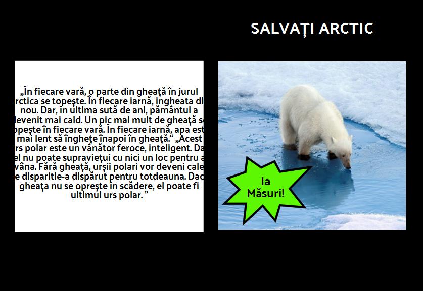 În Cazul în Care se Polar Bears Live? PSA