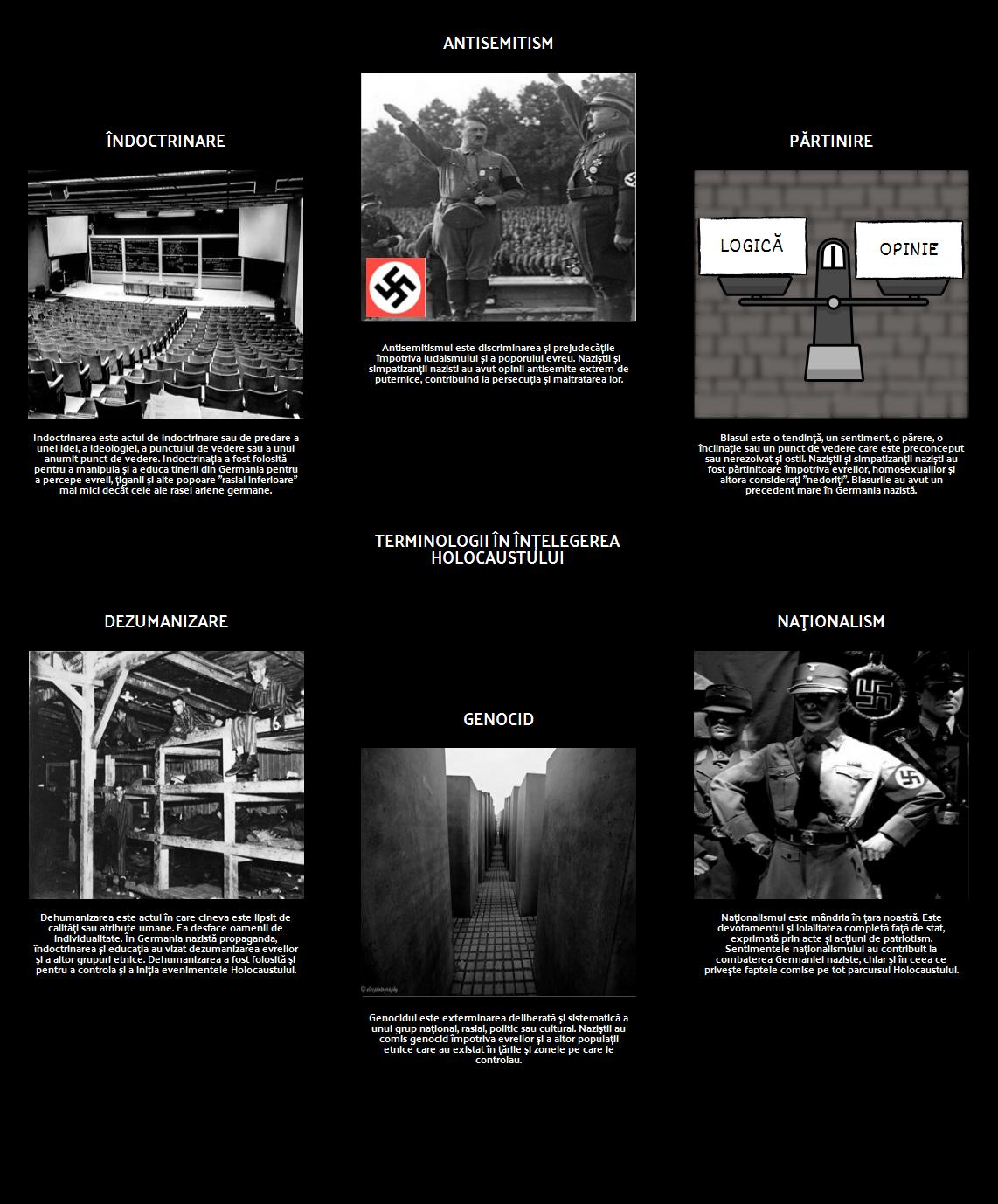 Istoria Holocaustului - Terminologii în Înțelegerea Holocaustului