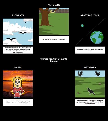 Lumea ta - Elemente Literare