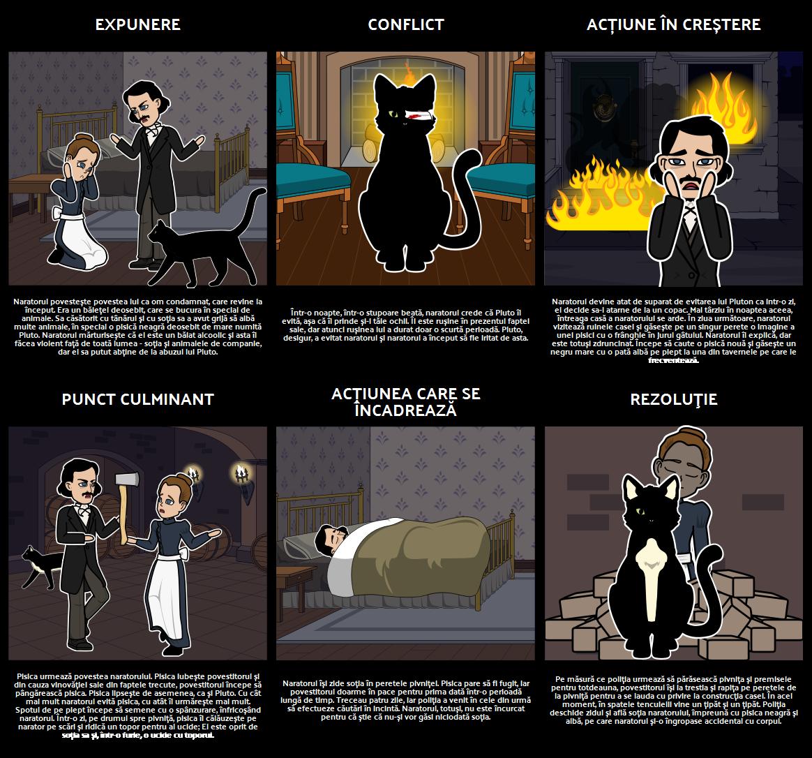 Plot Diagrama Pentru Black Cat