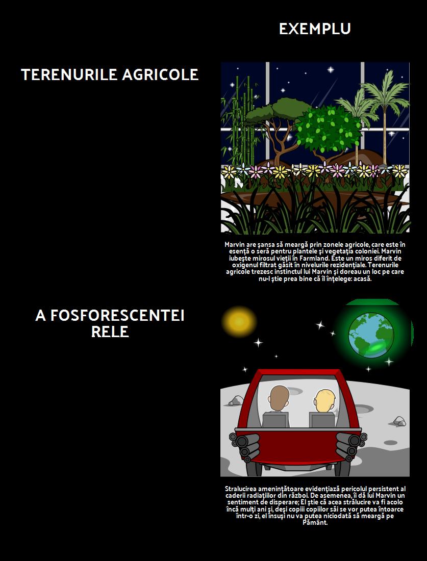 Teme, Motive și Simboluri în Cazul în Care Te Uita, Oh Pământ ...
