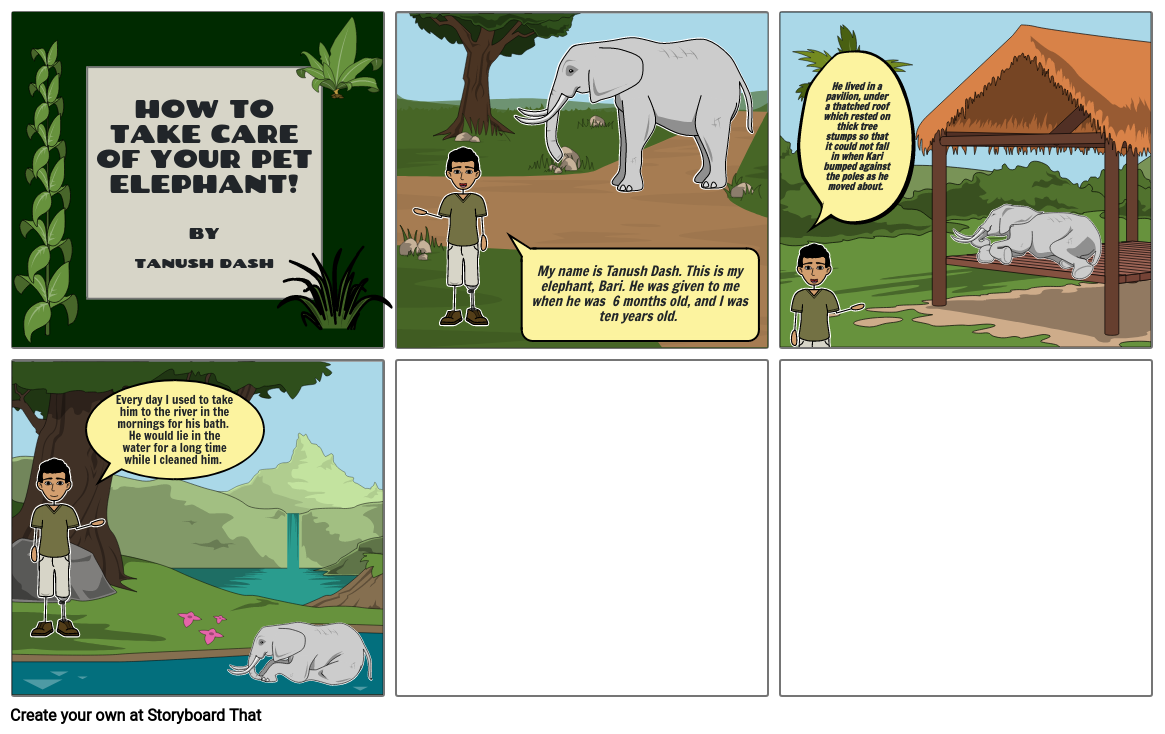 How to Take Care Of Your Elephant!