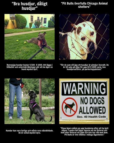 Bra Husdjur, Dåligt Husdjur - Integrerande Texter