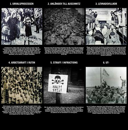 Historien om Förintelsen - Livet i Auschwitz