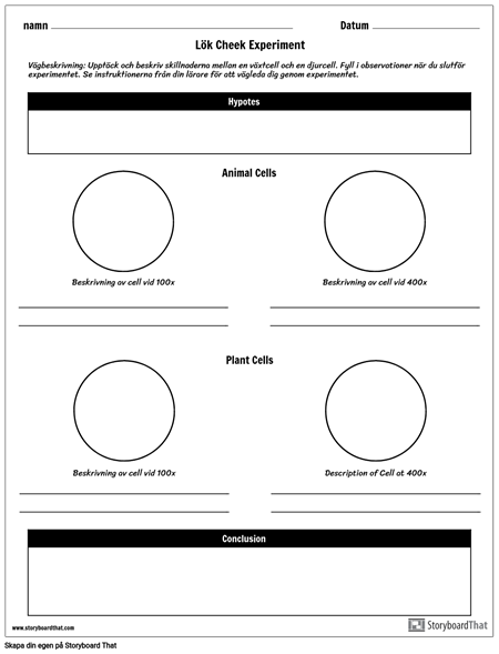 Onion Cheek Experiment Worksheet
