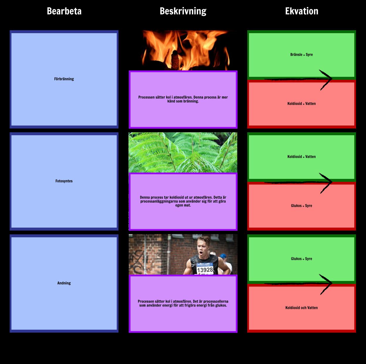 Processer i Kolcykeln